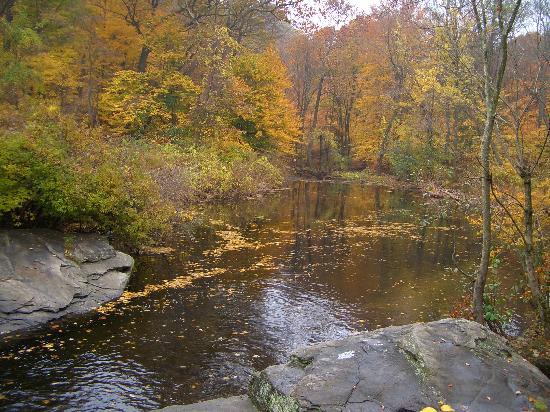 the-cascades-at-lake