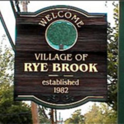 A Day with GG in: Rye Brook