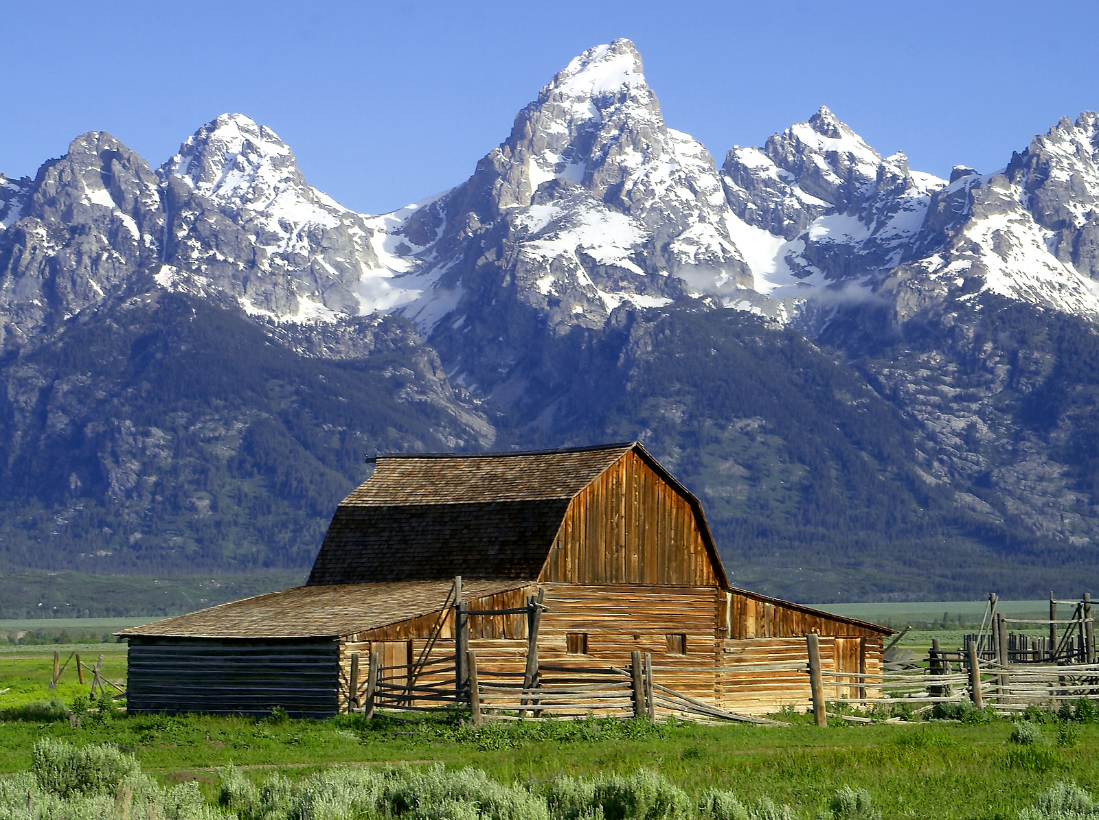 A Day with GG in: Jackson Hole