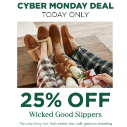 TODAY ONLY: 25% Off Wicked Good Slippers at L.L.Bean